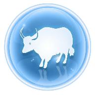 牛牛碰视频播放器1.1 安卓版