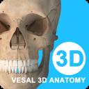 维萨里3D解剖2.5.0 手机版