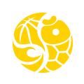 乐鱼体育1.0.11 安卓版