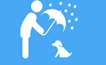 免费领养动物的app
