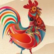 手机抢鸡赚钱appv1.0.1