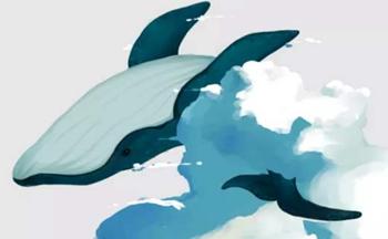 北冥有鱼蓝奏云软件合集