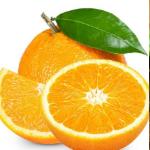 翼支付甜橙借钱v1.0.2
