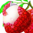 荔枝口袋秒批版v1.0.0