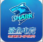 鲨鱼电竞appv1.0.8