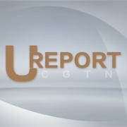CCTV u report苹果版v1.0.0