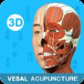 中医经络腧穴解剖教学appv1.0