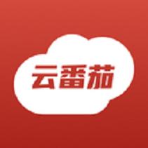 云番茄民宿管理软件v1.0