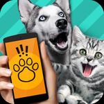 宠物翻译器免费版v1.0