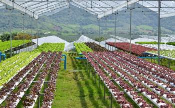 靠谱的农业知识app