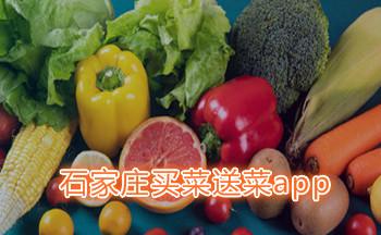 石家�f�I菜送菜app