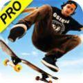 skate3手�C版全�龅亟怄i版1.5.3 中文版